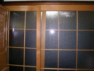 20060419c.jpg
